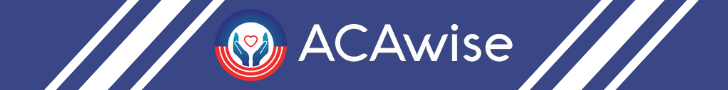 prior year filing with ACAwise
